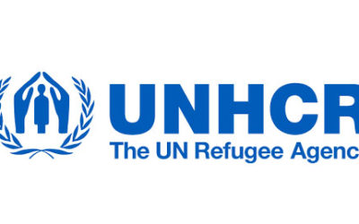 Anita Nair named UNHCR's high profile supporter in India